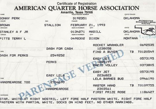 Sonny Perk 1993 Brown Stallion PED.jpg