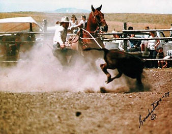 Terry calf roping at Browning 1988.jpg