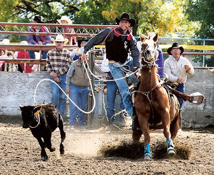 Zanen at Mile City College Rodeo Sept 24