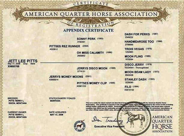 Jett Lee Pitts 2008 gray mare Money Moon