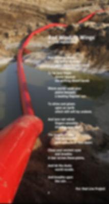 - Lisa's Poem - Red Winding Wings  .jpg