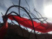 - Red Line at Asbestos  6-18 em_28.JPG