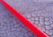 - Salton Sea - Red Line - cracked ground