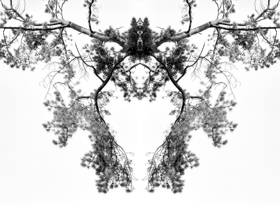 無題1 (2).jpg