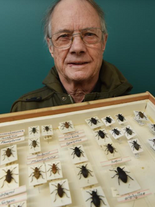 Anthony Harris with a display case of weevils he has collected. Photo: Gregor Richardson. Otago Daily Times 18 June 2018.