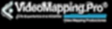 Logo%20WEB%203D%20VMP%202020_00398_edite