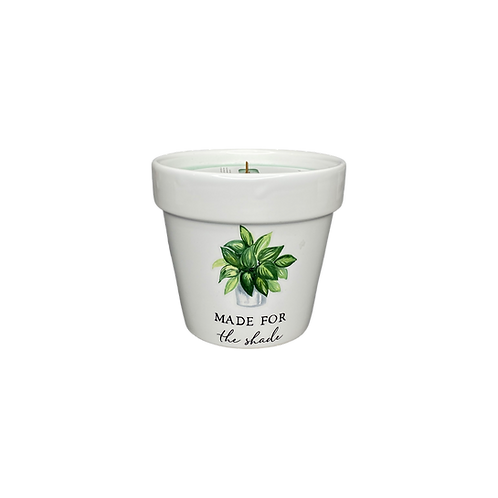 clarity scented candle - flower pot