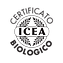icea.png