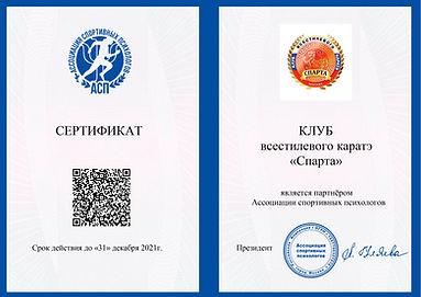 СЕРТИФИКАТ ПАРТНЕРА Спарта. docx.jpg