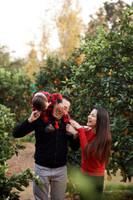 •-han-family-2017-002.jpg