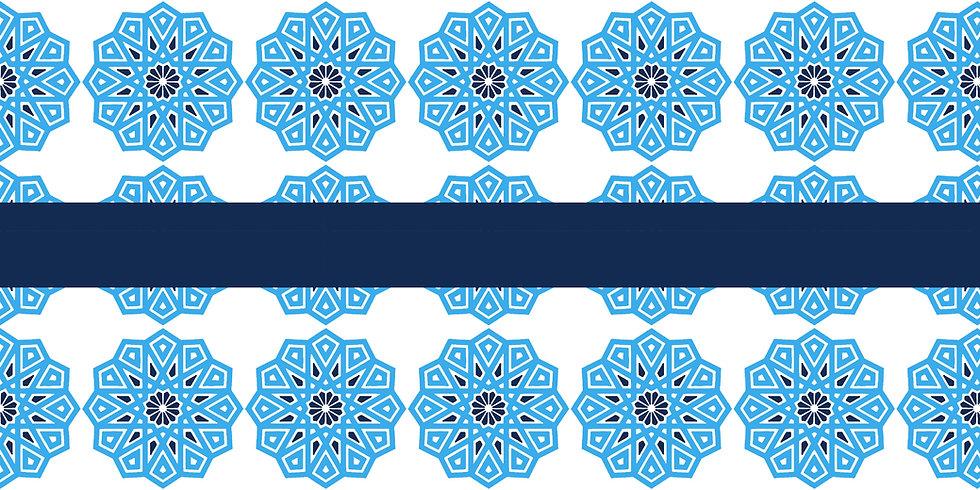 MENA S.A. banner.jpg
