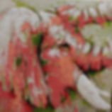Éléphant rose.jpg