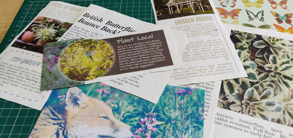 Plant/ Nature Magazine Clippings