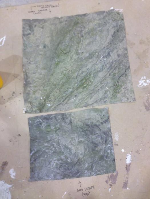 Mould & Muddy Silt Sample