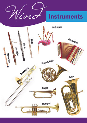 Wind Instruments School Poster