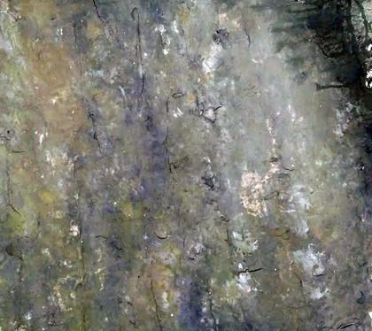 Mouldy Concrete Sample