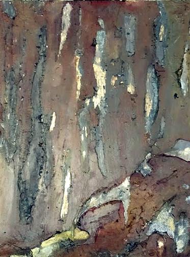 Rotting Painted Wood
