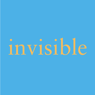 adjective someone or something that is invisible cannot be seen  Read Redefinition