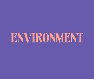 environment // any type of word