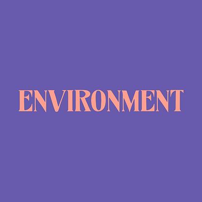 card__environment.png