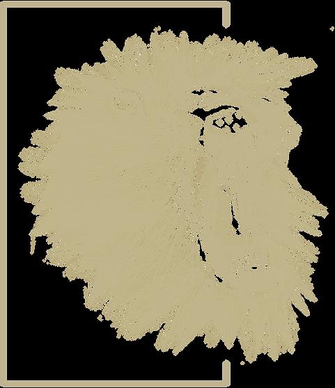 ROAR-LANDING-LION ICON.png
