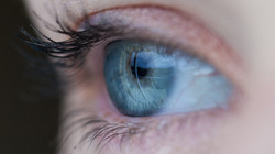 Iris Diagnose