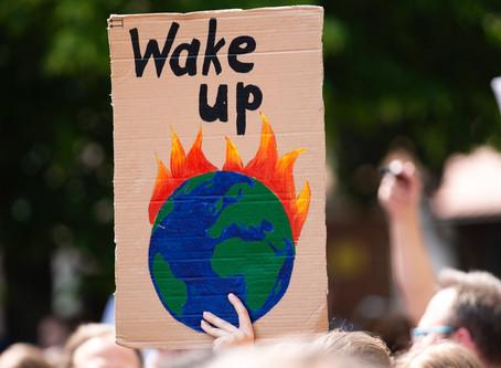 Antes de Greta: as ativistas ambientais da história