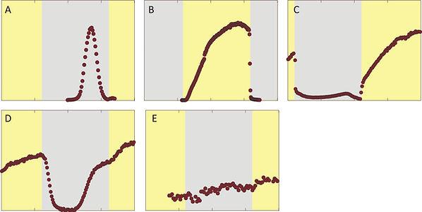 Fig1_Diel profiles3.jpg