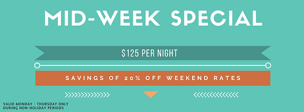 Mid-Week Special at the Fig Tree Retro Studio