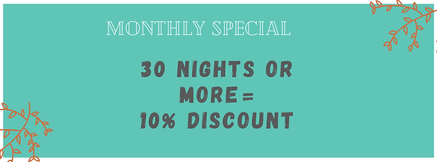 Monthly Special at the Fig Tree Retro Studio