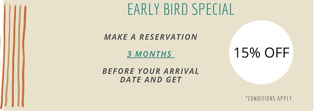 Early Bird Special at the Fig Tree Retro Studio
