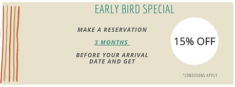 Early Bird Specials at Fig Tree Retro Studio