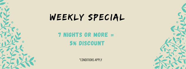 Weekly Special at the Fig Tree Retro Studio