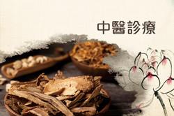 Leciel Medical 中醫診療