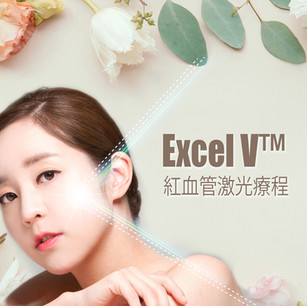 ExcelV.jpg