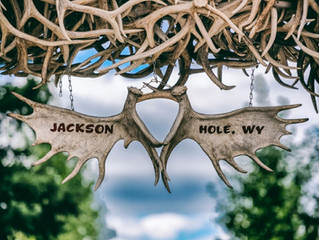 Things to do in Jackson Hole Wyoming this Summer!