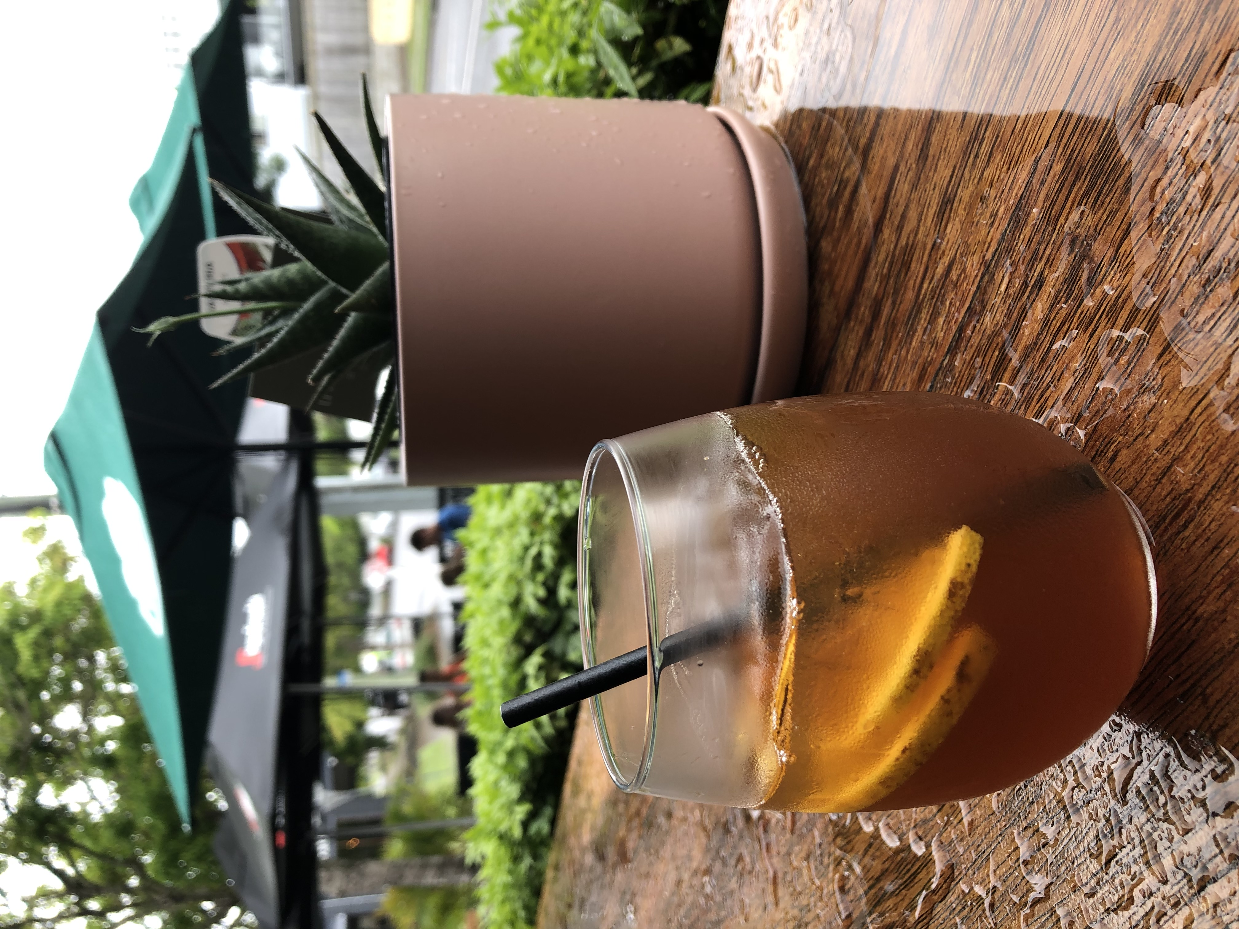 Honey Lemon Cold Brew Tonic