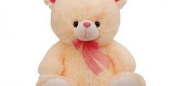 TEDDY BEAR 20INCH