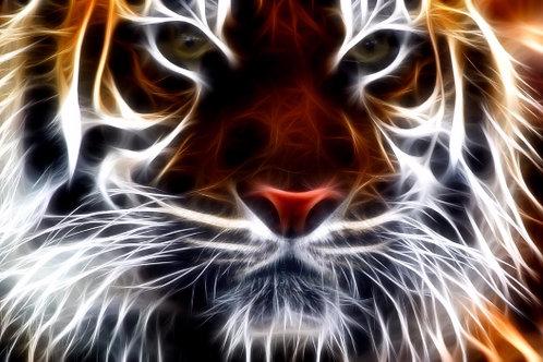 Underbust Tigre Fractal