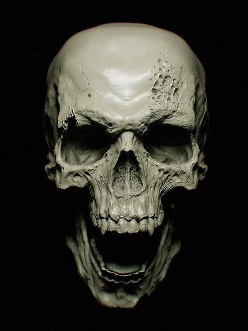 Underbust Old Skull