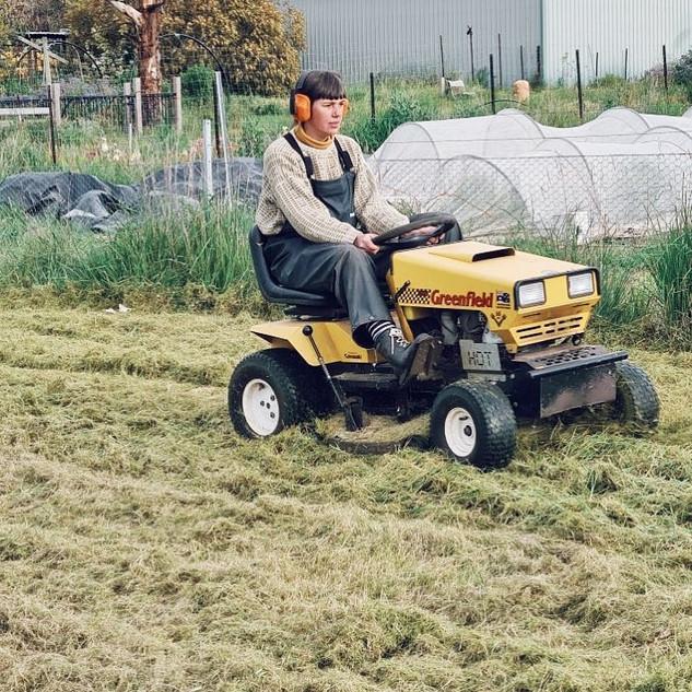 Mowing at Pennyweight Farm.jpg