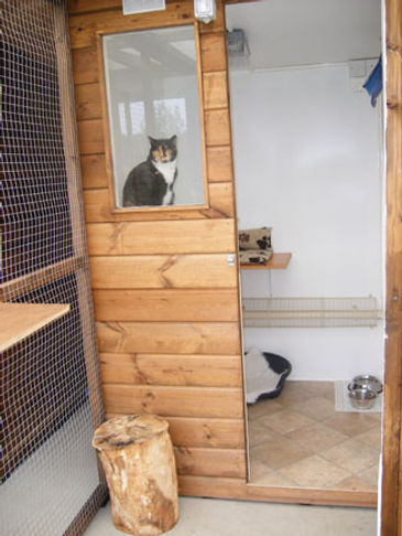 Cambria Farm Cattery - Single Room.JPG