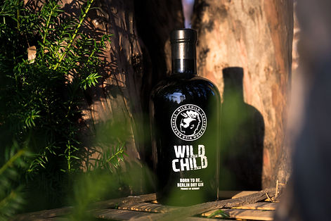 Wild_Child_Color6.jpg