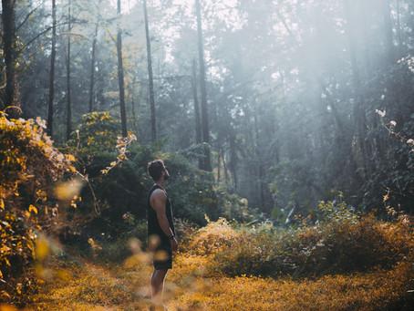 4 juli- Terug naar stilte in de Natuur, Almen