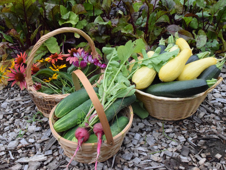 Weed It and Reap: Nature's Bounty