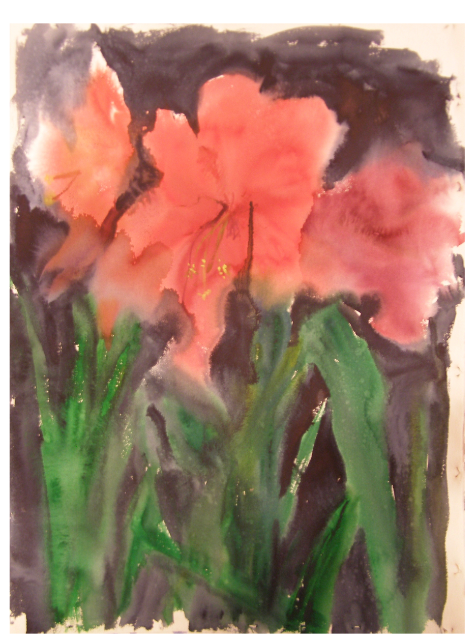 Amaryllis, Watercolor on rag paper