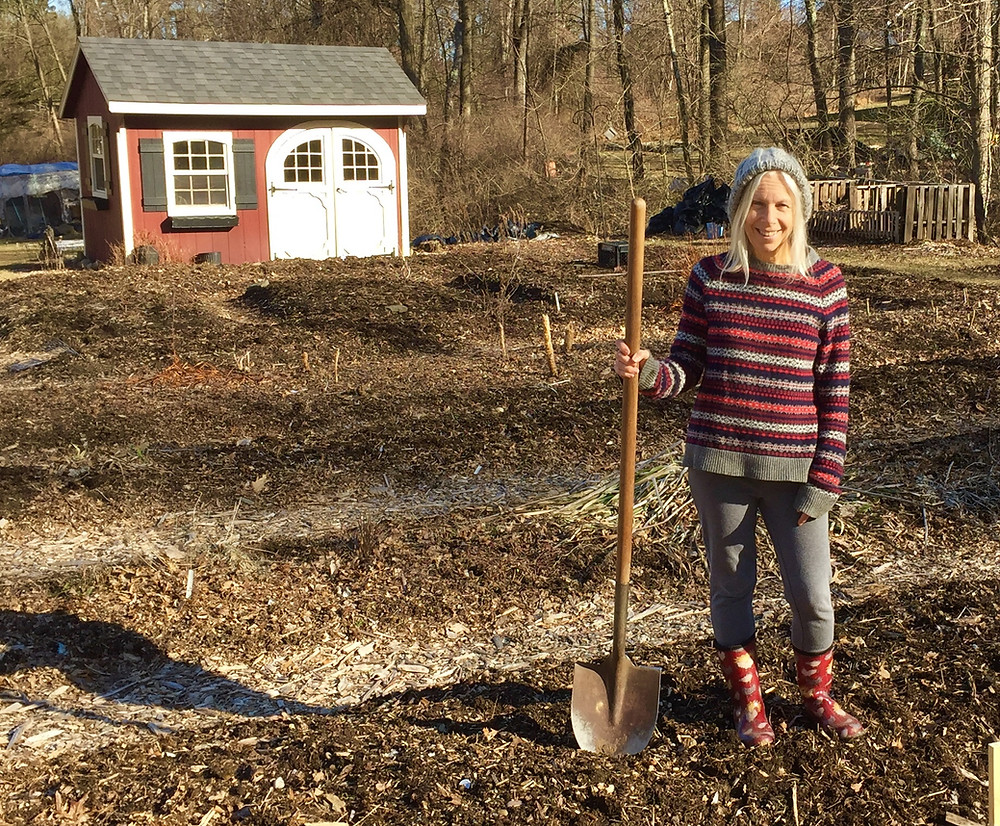 Victoria in Her March Garden: The calm before the spring gardening storm