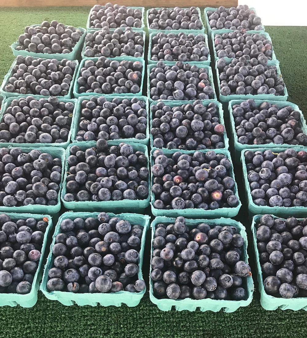 Bursting blueberries