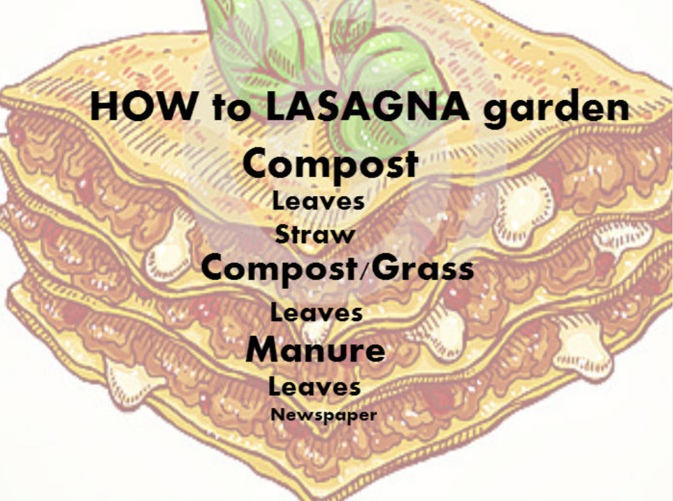How to lasagna garden
