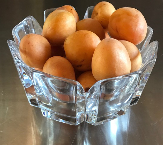 Ripe apricots from our tree